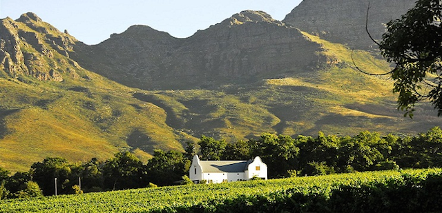 Uncovering Stellenbosch with #Stellenblog